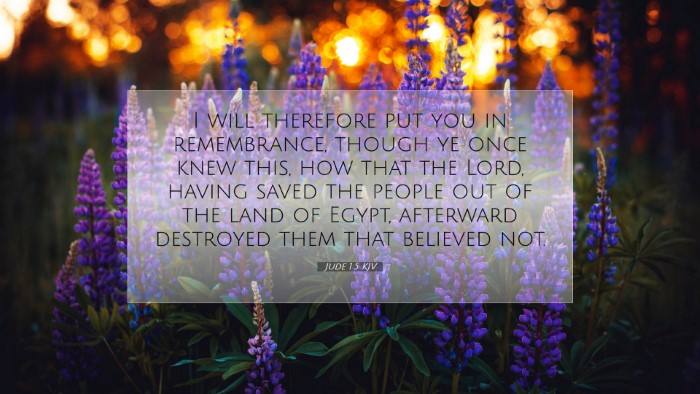 Picture 07 - Jude 1:5 KJV Desktop Wallpaper - I will therefore put you in remembrance, though - Desktop Bible Verse Wallpaper
