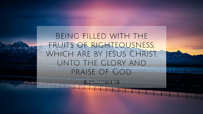 Picture 07 - Philippians 1:11 KJV Desktop Wallpaper - Being filled with the fruits of righteousness, - Desktop Bible Verse Wallpaper