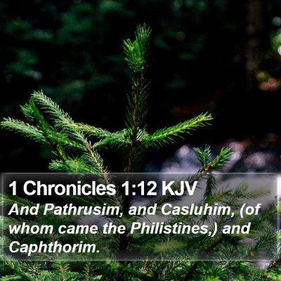 1 Chronicles 1:12 KJV Bible Verse Image