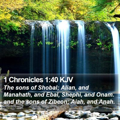 1 Chronicles 1:40 KJV Bible Verse Image