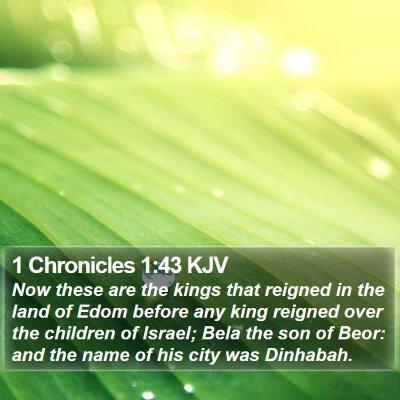 1 Chronicles 1:43 KJV Bible Verse Image