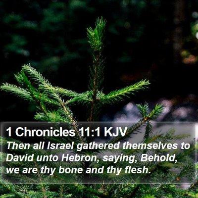 1 Chronicles 11:1 KJV Bible Verse Image