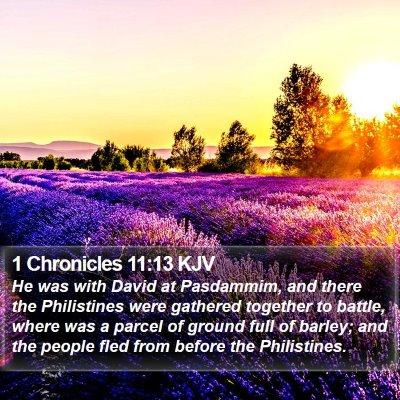1 Chronicles 11:13 KJV Bible Verse Image