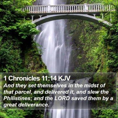 1 Chronicles 11:14 KJV Bible Verse Image