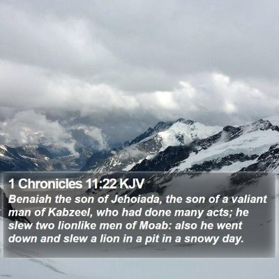 1 Chronicles 11:22 KJV Bible Verse Image
