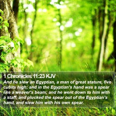 1 Chronicles 11:23 KJV Bible Verse Image