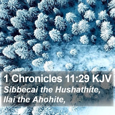 1 Chronicles 11:29 KJV Bible Verse Image
