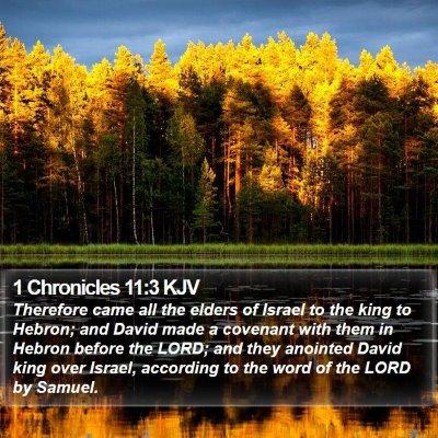 1 Chronicles 11:3 KJV Bible Verse Image
