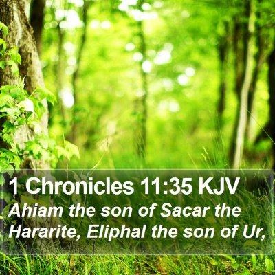 1 Chronicles 11:35 KJV Bible Verse Image