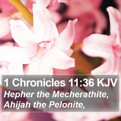 1 Chronicles 11:36 KJV Bible Verse Image