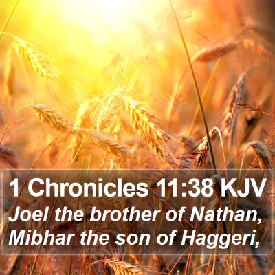 1 Chronicles 11:38 KJV Bible Verse Image