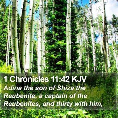 1 Chronicles 11:42 KJV Bible Verse Image