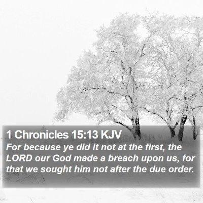 1 Chronicles 15:13 KJV Bible Verse Image