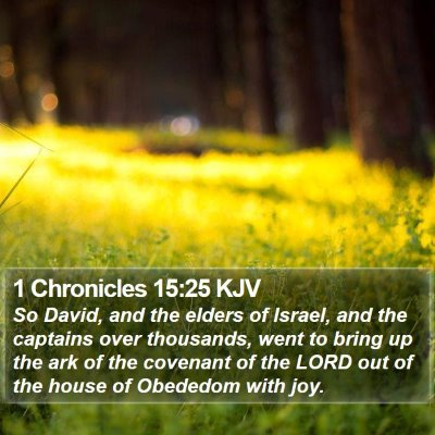 1 Chronicles 15:25 KJV Bible Verse Image