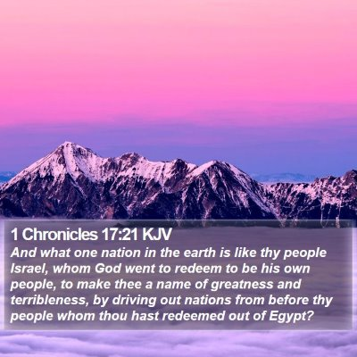 1 Chronicles 17:21 KJV Bible Verse Image