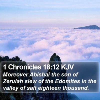 1 Chronicles 18:12 KJV Bible Verse Image