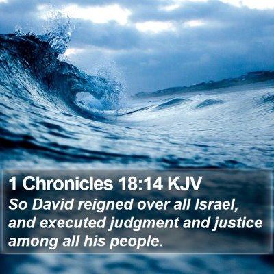 1 Chronicles 18:14 KJV Bible Verse Image