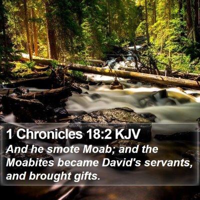 1 Chronicles 18:2 KJV Bible Verse Image