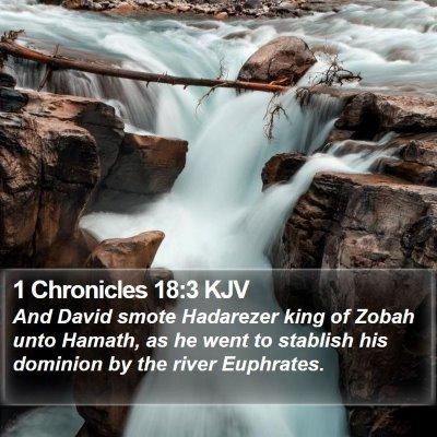 1 Chronicles 18:3 KJV Bible Verse Image