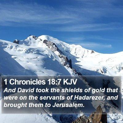 1 Chronicles 18:7 KJV Bible Verse Image
