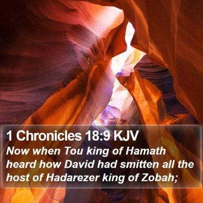 1 Chronicles 18:9 KJV Bible Verse Image