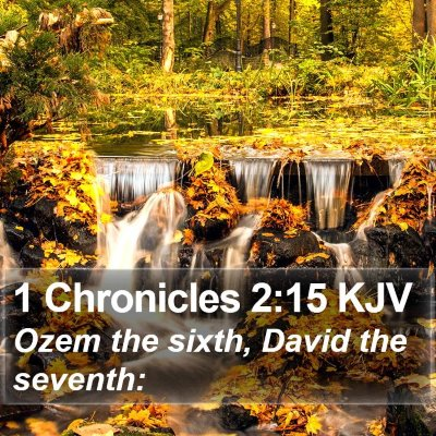 1 Chronicles 2:15 KJV Bible Verse Image