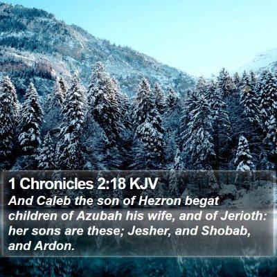 1 Chronicles 2:18 KJV Bible Verse Image