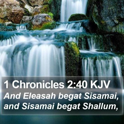 1 Chronicles 2:40 KJV Bible Verse Image