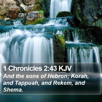 1 Chronicles 2:43 KJV Bible Verse Image
