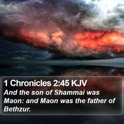 1 Chronicles 2:45 KJV Bible Verse Image