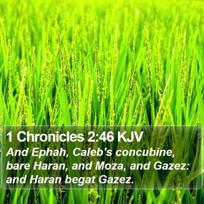 1 Chronicles 2:46 KJV Bible Verse Image