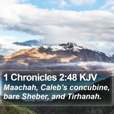 1 Chronicles 2:48 KJV Bible Verse Image