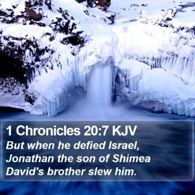 1 Chronicles 20:7 KJV Bible Verse Image