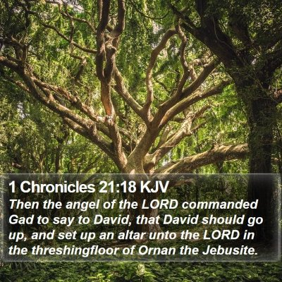 1 Chronicles 21:18 KJV Bible Verse Image