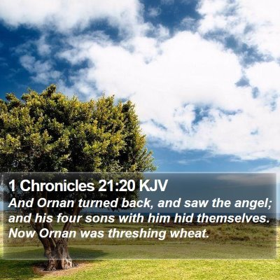 1 Chronicles 21:20 KJV Bible Verse Image