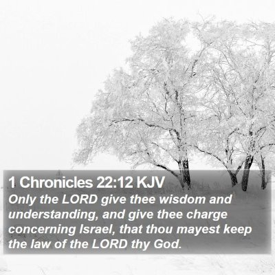 1 Chronicles 22:12 KJV Bible Verse Image
