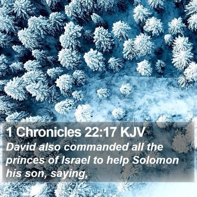 1 Chronicles 22:17 KJV Bible Verse Image