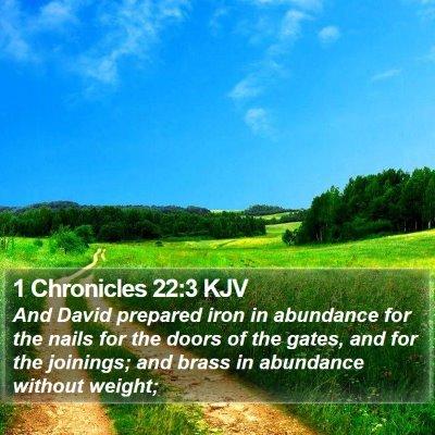 1 Chronicles 22:3 KJV Bible Verse Image