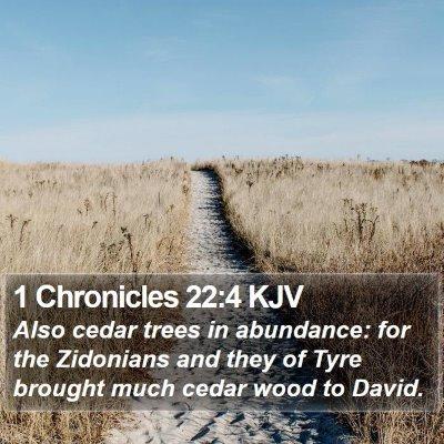 1 Chronicles 22:4 KJV Bible Verse Image