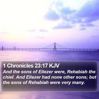 1 Chronicles 23:17 KJV Bible Verse Image