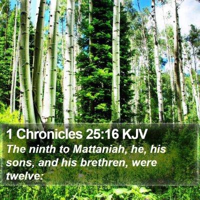 1 Chronicles 25:16 KJV Bible Verse Image