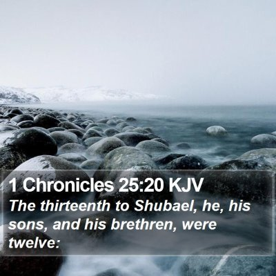 1 Chronicles 25:20 KJV Bible Verse Image