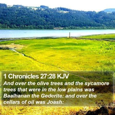 1 Chronicles 27:28 KJV Bible Verse Image
