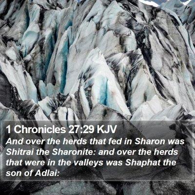 1 Chronicles 27:29 KJV Bible Verse Image