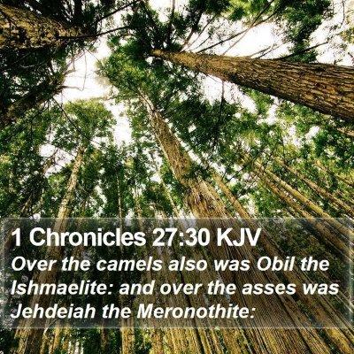 1 Chronicles 27:30 KJV Bible Verse Image