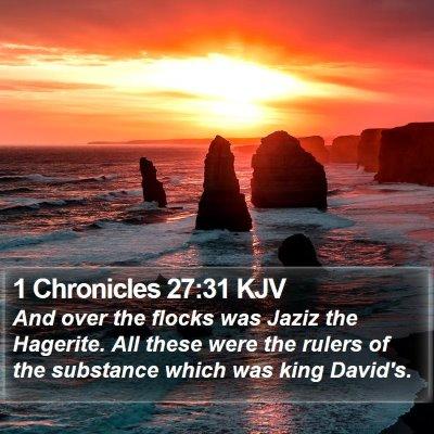 1 Chronicles 27:31 KJV Bible Verse Image