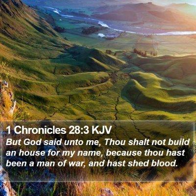 1 Chronicles 28:3 KJV Bible Verse Image