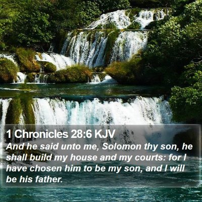 1 Chronicles 28:6 KJV Bible Verse Image