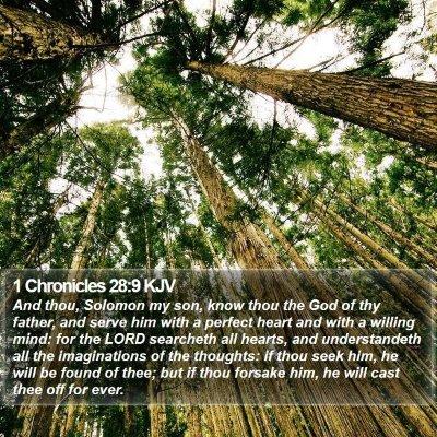 1 Chronicles 28:9 KJV Bible Verse Image