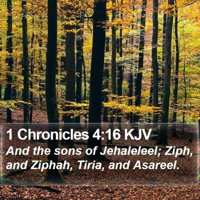 1 Chronicles 4:16 KJV Bible Verse Image